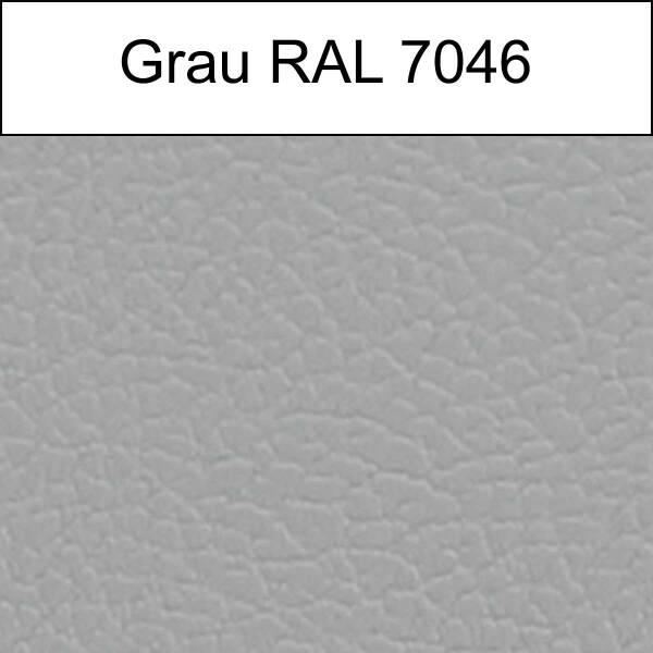 grau (RAL 7046)